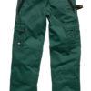 Industry300 Trousers Short Dickies - green/black