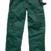 Industry300 Trousers Regular Dickies - green/black