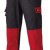 Everyday Trousers Dickies - black/red
