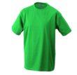 T-Shirt Werbung auf Round-T Heavy - irish green