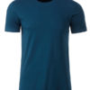 Mens Basic T James & Nicholson - petrol