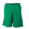 Classic Team Shorts James & Nicholson - green