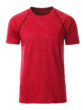 Mens Sport T Shirt James & Nicholson - red melange titan