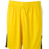 Team Shorts James & Nicholson - yellow