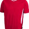 Team T James & Nicholson - red