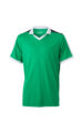 V Neck Team Shirt James & Nicholson - green