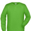 Men's Bio Sweat James & Nicholson - lime green