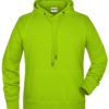Men's Bio Hoody James & Nicholson - acid yellow