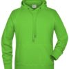 Men's Bio Hoody James & Nicholson - lime green